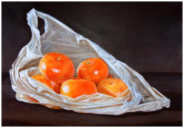 realistic painting of clementines in a plastic bag