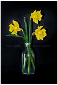 larger than life realist painting of daffodils in a bottle